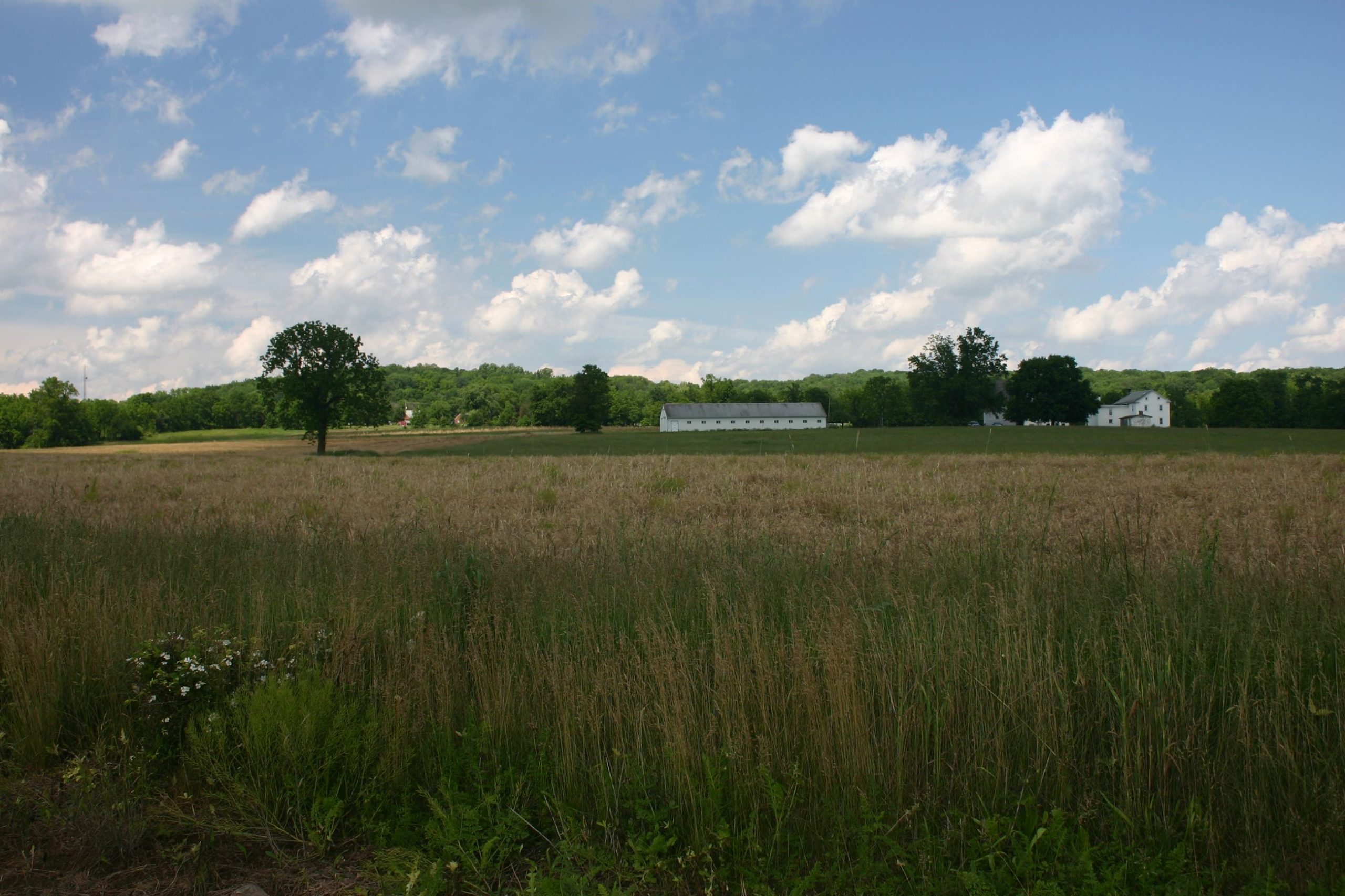 Another Montgomery County Farm Permanently Preserved