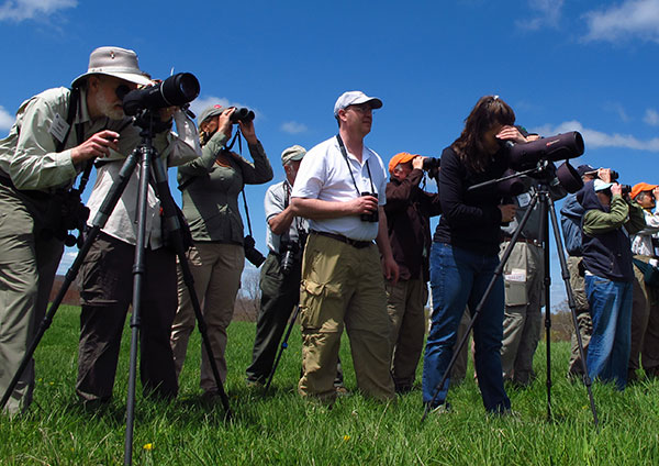 Oaks Welcomes North America's Biggest Birdwatching Expo