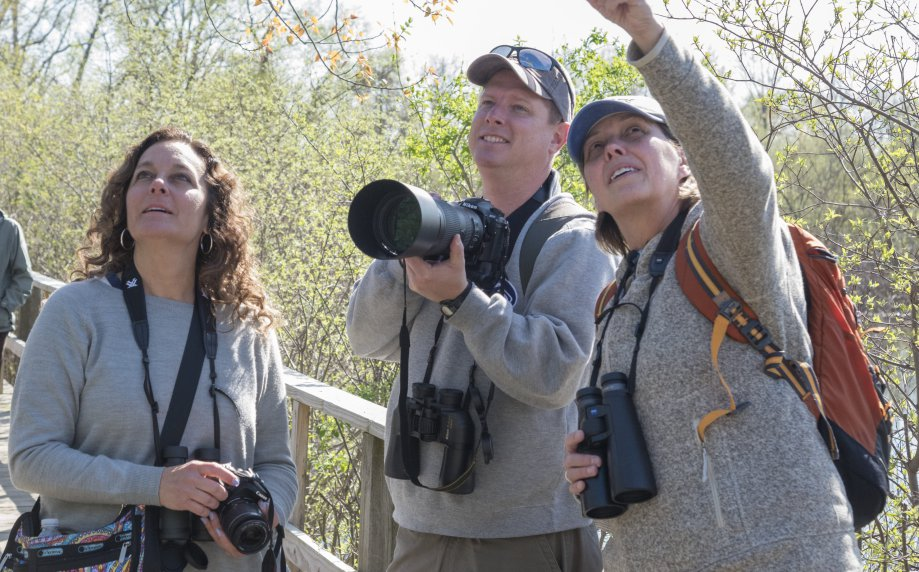 American Birding Expo, the Ultimate Experience for Birdwatchers and Nature Enthusiasts, Is Here