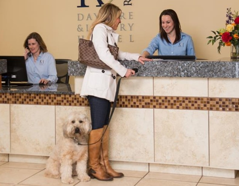 Luxury hotel for dogs to open in Malvern