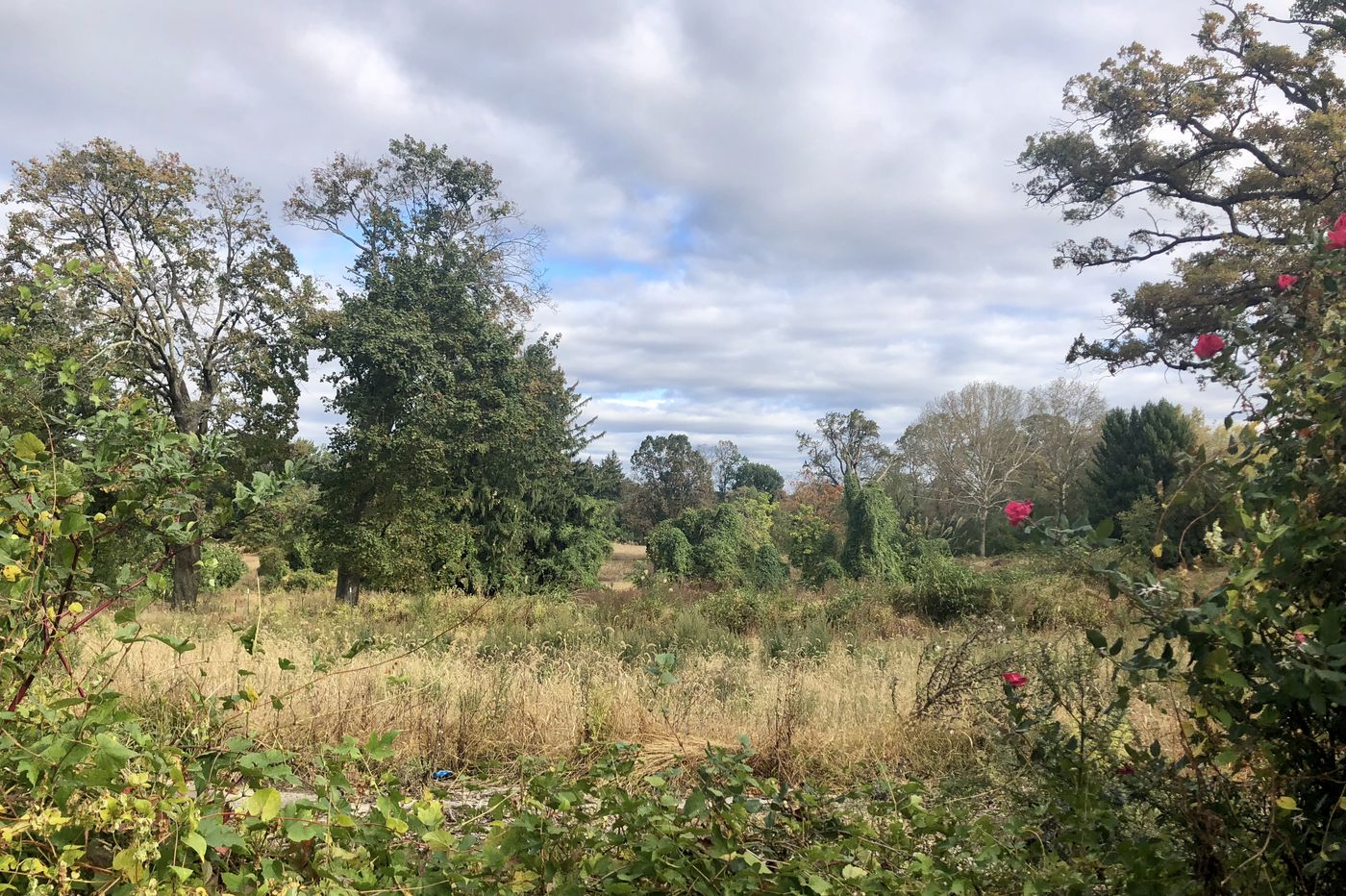 Former Ashbourne Country Club Land in Cheltenham Township Has New Owner With New Development Date