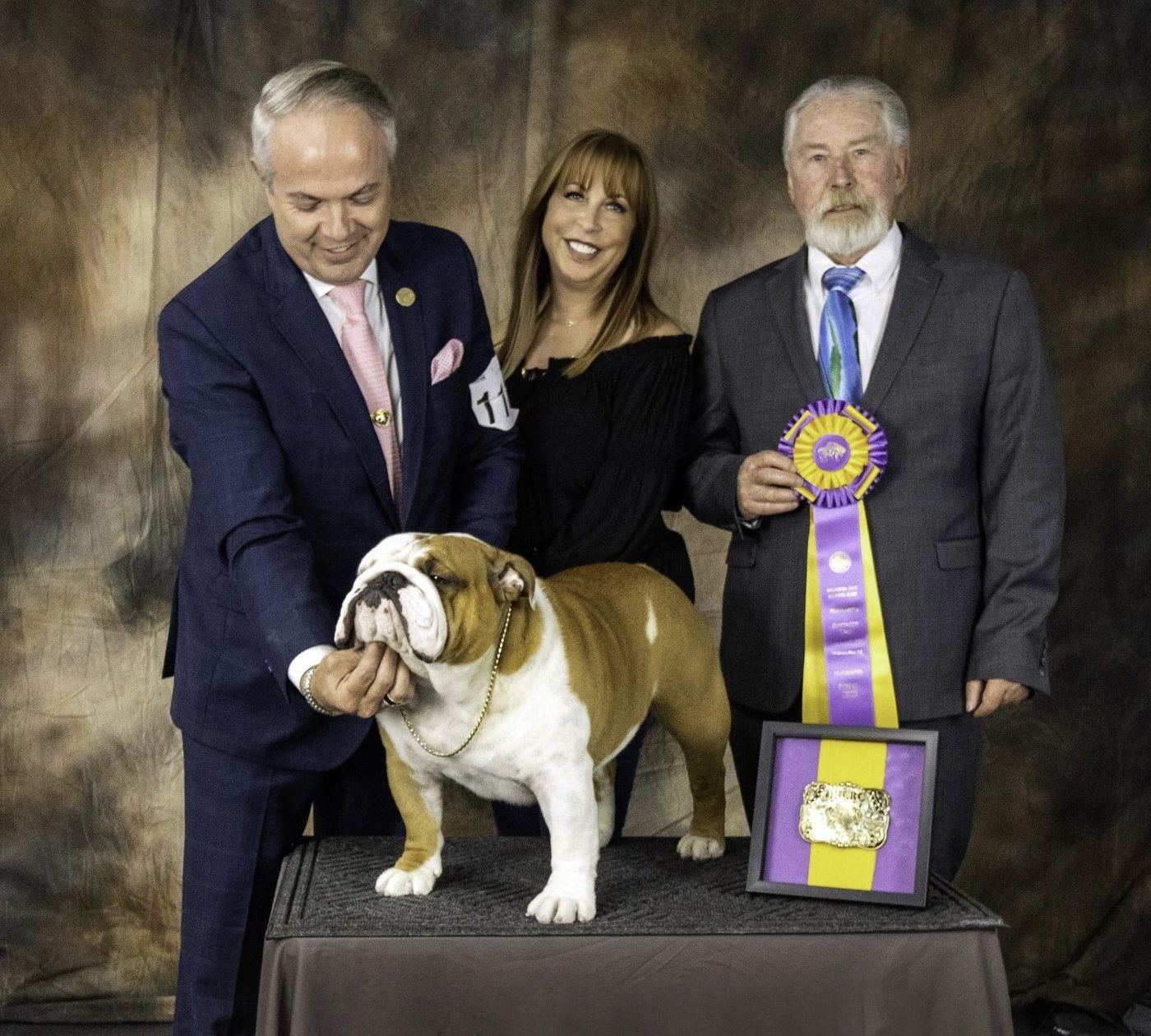 Abington High School Grad's Bulldog Captures Hearts of Audience, Wins National Dog Show