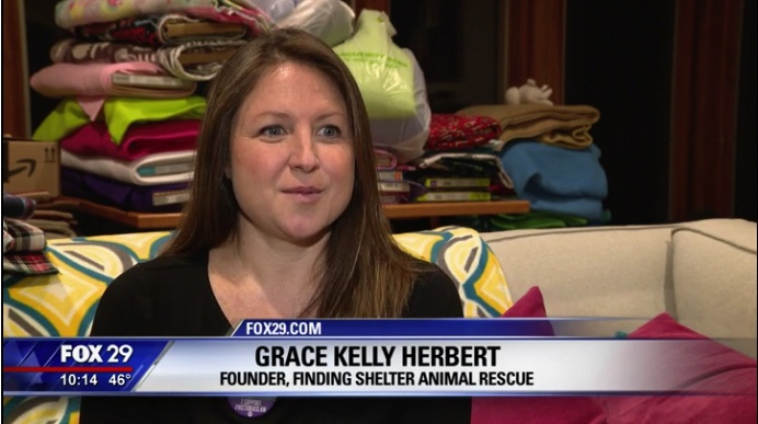 Finding Shelter Animal Rescue Volunteers King of Prussia Make Pouches for Baby Animals Affected By Australian Wildfires