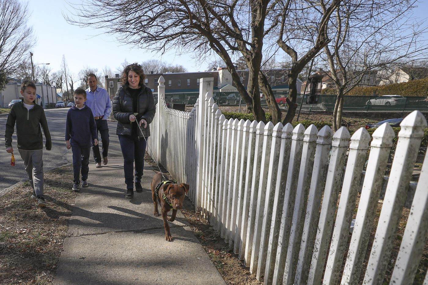 With Pooches Currently in Foster Homes and Rescue Shelters, Doggie Style Pets in Narberth Hopes to Restart Its Adoption Program Next Week
