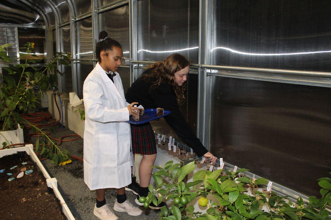 Gwynedd-Mercy Academy Elementary Only PA School to Earn Green Ribbon Award for 2020