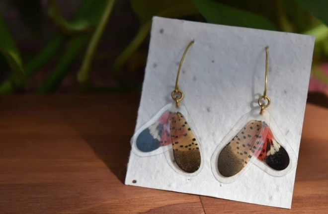 Montco Artists Turn Death of Spotted Lanternfly into Catchy Music Video and Stylish Jewelry
