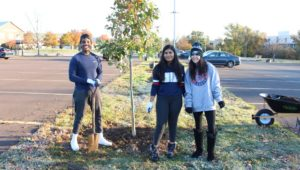 earth day plant trees montco