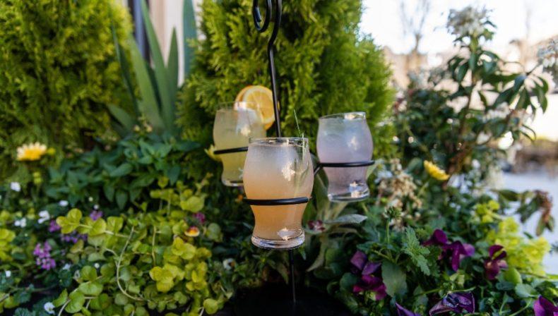 Lola's Garden cocktails Ardmore