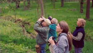 Birdwatching in Chester County
