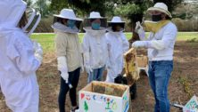 Abington Friends School Beekeepers