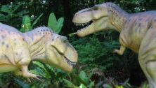 Two of Dino Don, Inc. dinosarus. Owner Don Lessem was an advisor on Jurassic Park.