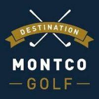 vftcb golf logo
