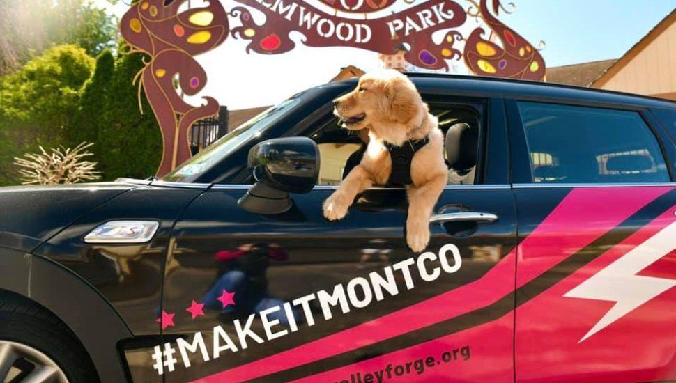 VF make it montco doggie elmwood park zoo