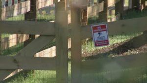 A No Trespassing sign at a Wallingford house