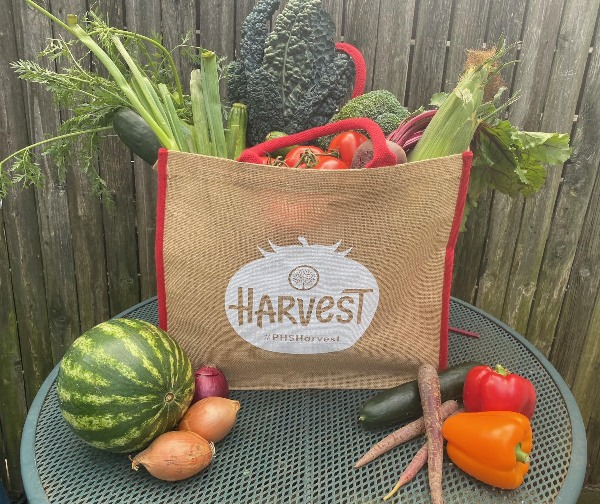 Harvest with gardeners fresh fruit
