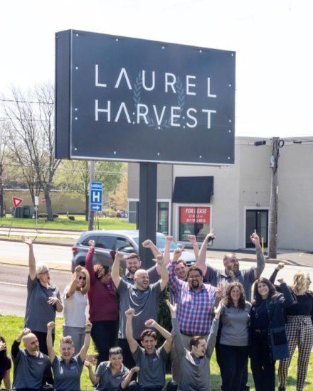 laurel harvest team montgomeryville, PA