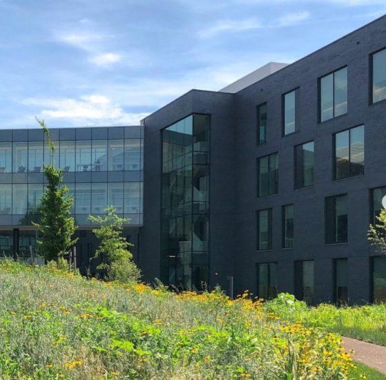 Rain Garden Radnor Medical Building