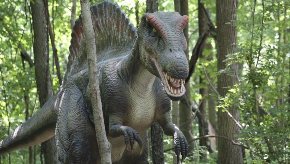 spinosaurus Dino Stroll