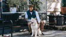 Crave Montco Pet Friendly