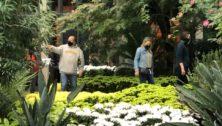 Visiting Longwood Gardens