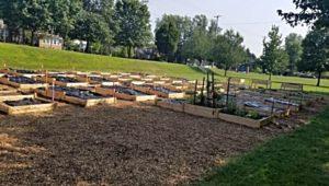 Sprouts Community Garden in Norristown.