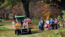 halloween events in montco